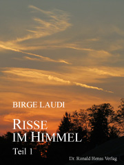 eBook Risse im Himmel